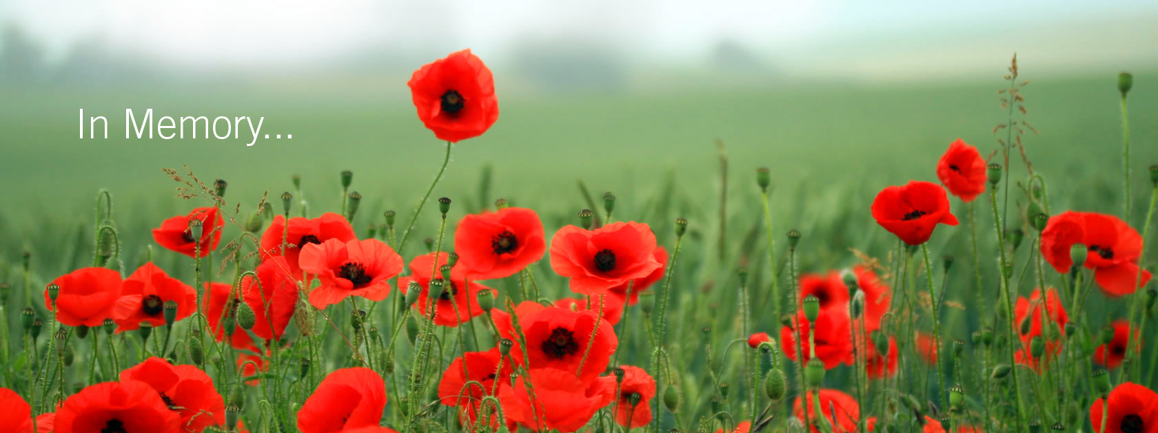 In Memory of those from the Asthall Leigh Parish who fell in The Great Wars